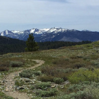 Genoa Peak MAD-A-THON 55k, trail